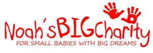 Noah's BIG Charity Logo